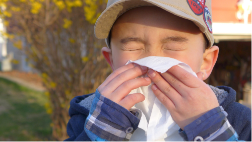 Sneezing Season - Everything You Need to Know About Fall Allergies image